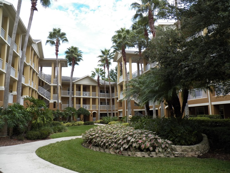 cypress-palms-courtyard